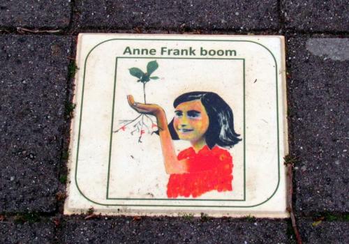 Anna  Frank boom